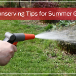 Water-Conserving Tips for Summer Gardening