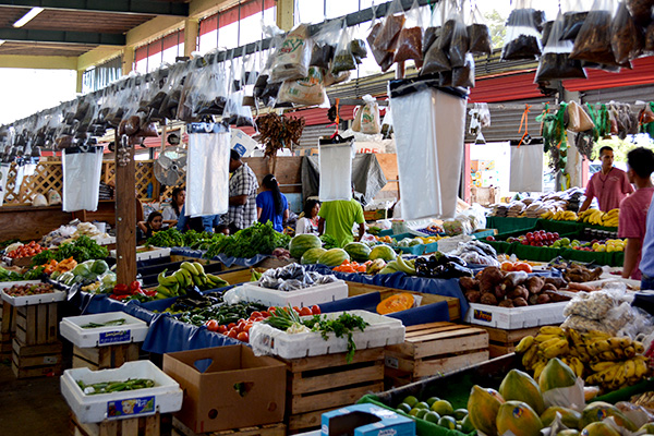 Redland Farmer's Market