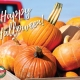 Happy Halloween from all of us at Redland Market Village