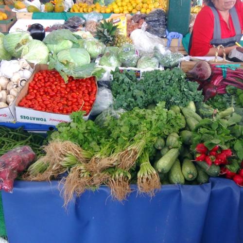 Redland-Market-Village-Farmers-Market-4
