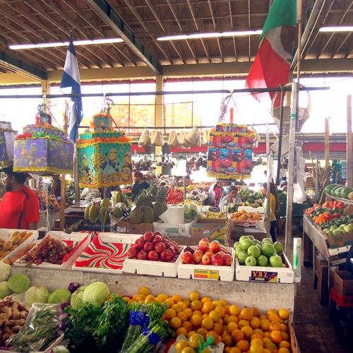 Redland-Market-Village-Farmers-Market-8
