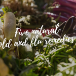 Five natural cold and flu remedies to go to