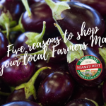 Five reasons to shop at your local farmers market