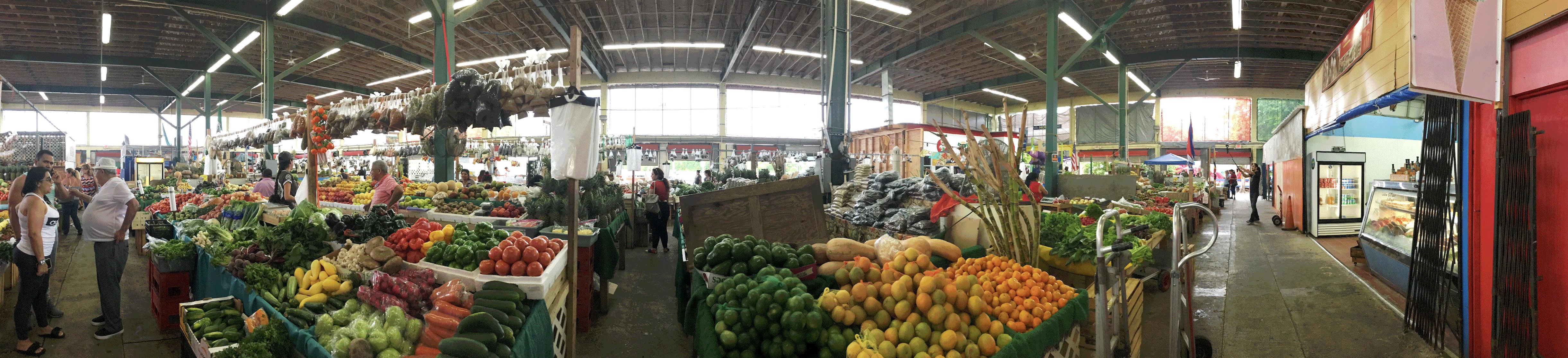 redland-farmers-market