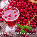 Cranberry-infused cocktail for autumn entertaining