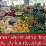 Redland Market Village offers a huge Farmers Market with a delicious variety from local farms.