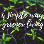 6 simple ways to greener living…